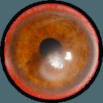 cornea-circle-150