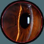 retina-circle-150