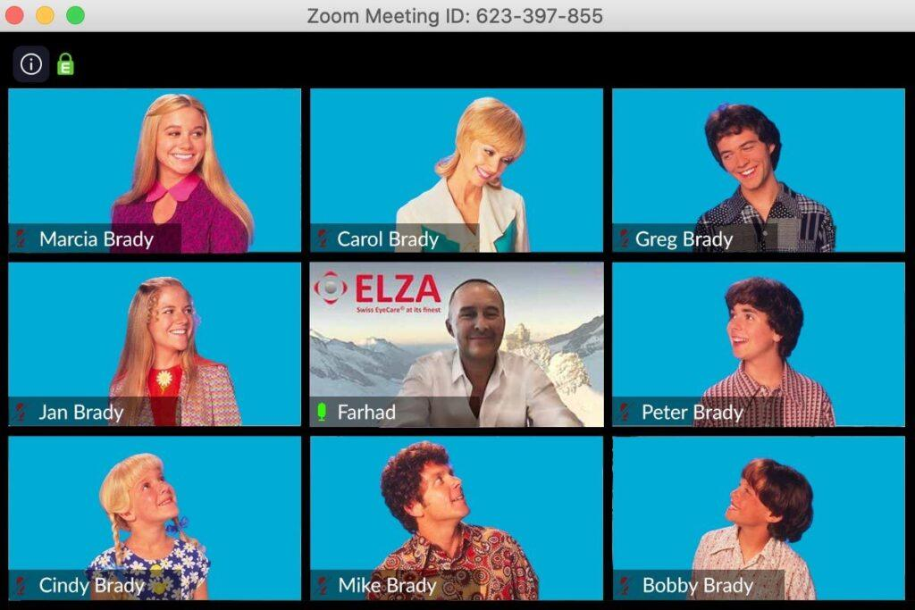 Education without Borders - Farhad Hafezi's COVID-19 Education - Zoom Brady Bunch Parody